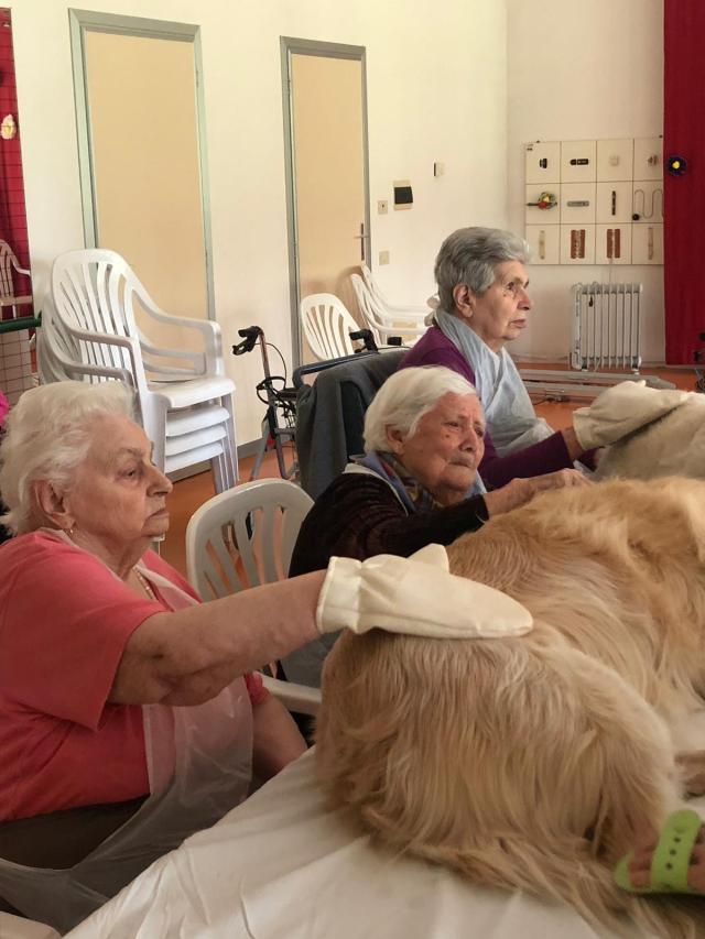 """Pet teraphy con cani Comunità Alloggio """"Silvagni"""""""